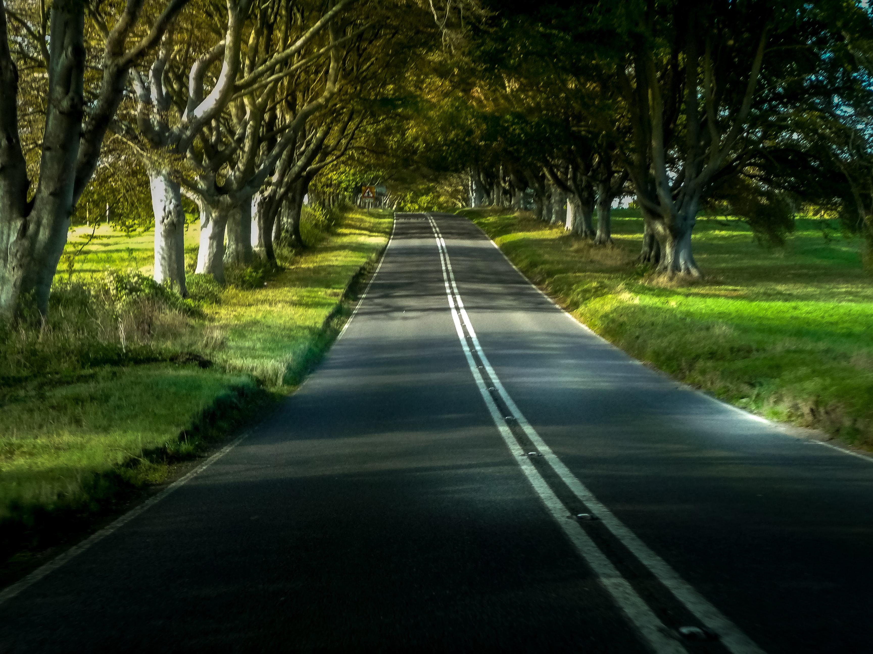 National Highways credit nick fewings via unsplash